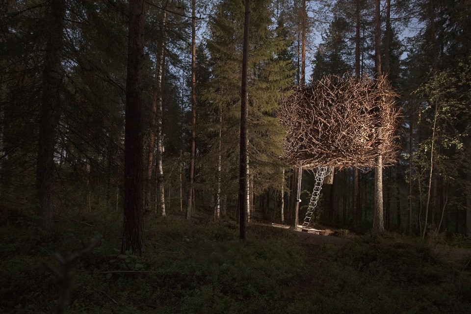 «Птичье гнездо» делает возможным стать частью окружающей среды, войти сюда можно только с помощью выдвигающейся лестницы. Фото: treehotel.se