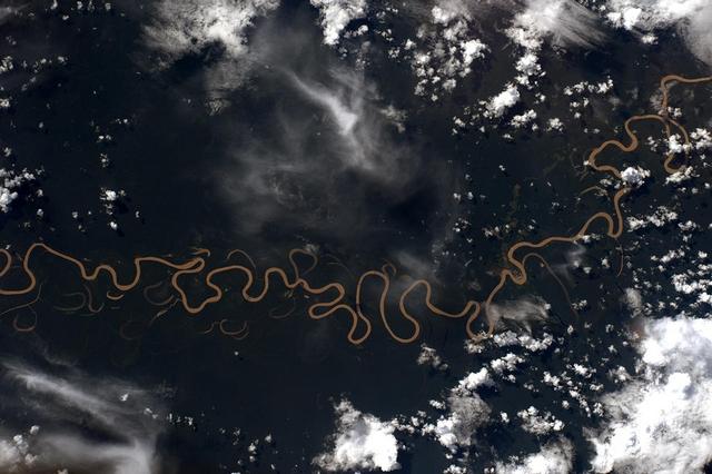 Амазонские джунгли. Фото:Tim Peake/ESA/NASA