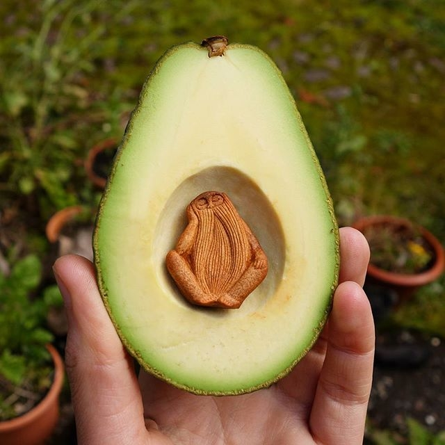 Фото: avocadostonefaces/instagram.com