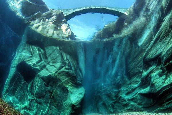 Фото: eco-live.com.ua