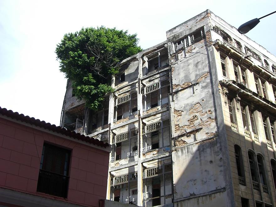 Фото: imgur.com