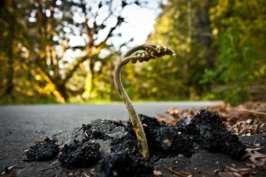 Фото: James Jackson/flickr.com