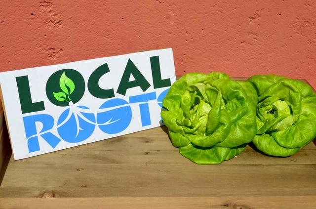 Фото: Local Roots/facebook.com