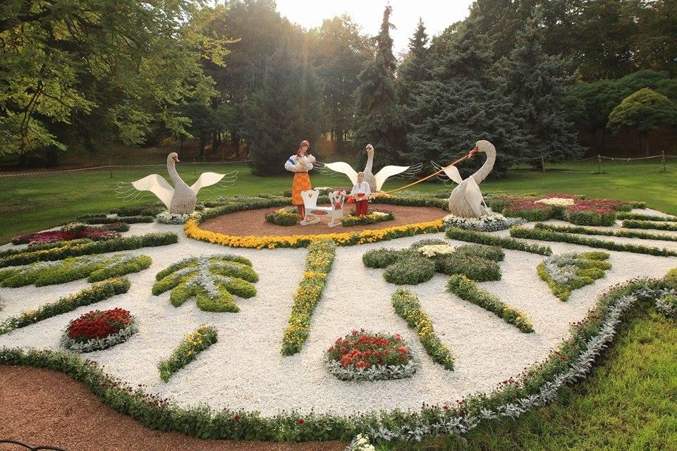 Виставка хризантем у 2015 році в Києві. Фото: EpochTimes.com.ua