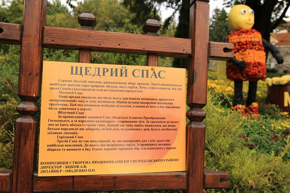 Выставка хризантем в 2015 году в Киеве. Фото: EpochTimes.com.ua