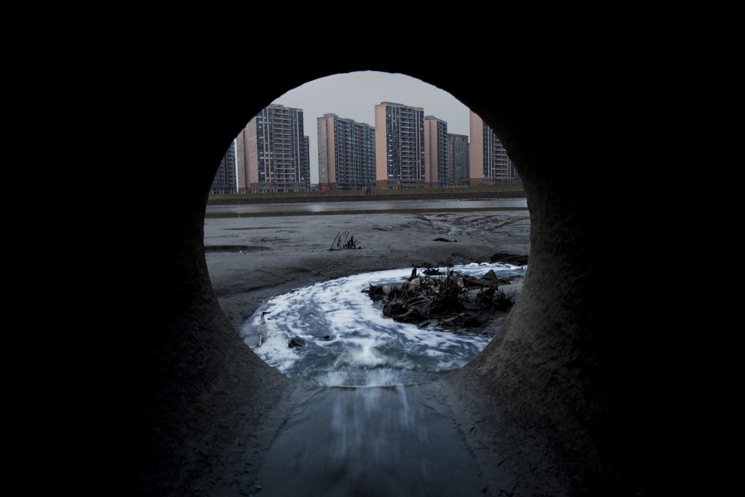 Фото: Лу Гуан (Lu Guang)