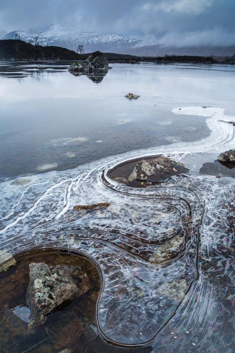 Болотистая пустошь Раннох-Мур. Фото: Томас Хитон/thomasheaton.co.uk ©
