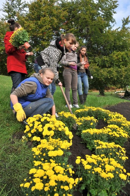 Школьники создают цветочную экспозицию на выставке хризантем. Фото: Владимир Бородин/The Epoch Times Украина