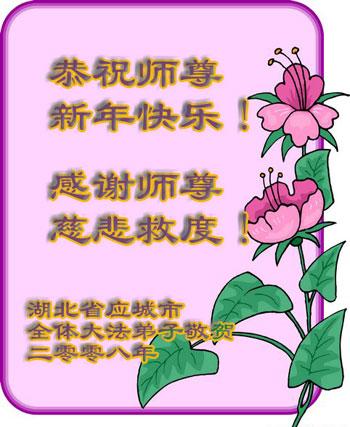 Все ученики Фалуньгун г.Инчен провинции Хубэй поздравляют уважаемого Учителя с Новым годом!