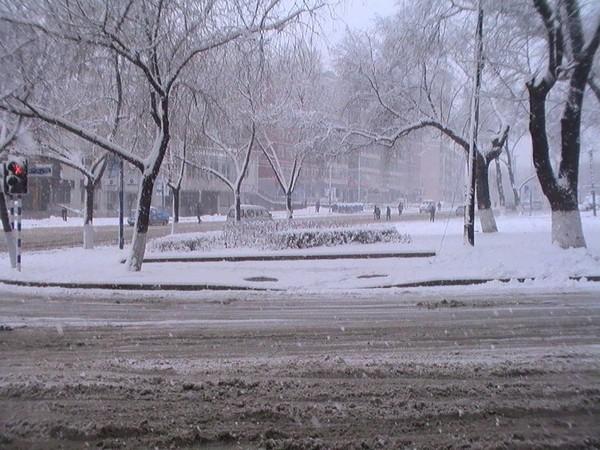 Сильные снегопады обрушились на северо-восток Китая. 13 апреля 2010 год. Провинция Хэйлунцзян. Фото прислали местные жители