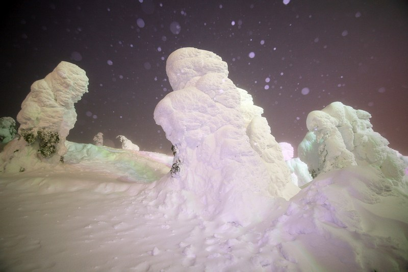 Деревья в снегу искусственно подсвечены. Фото: Koichi Kamoshida/Getty Images News