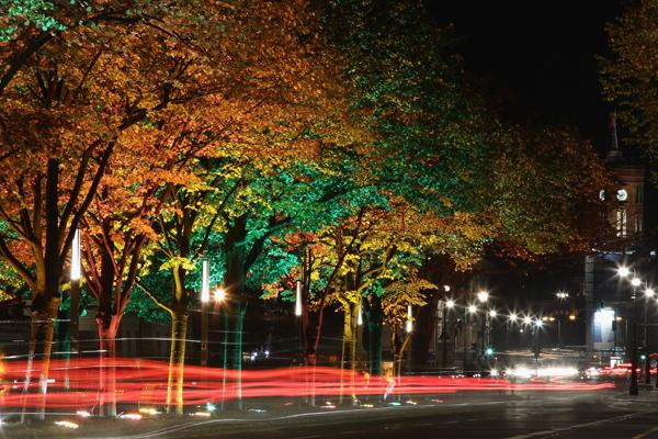 Проспект «Unter den Linden». Фото:Andreas Rentz/Getty Images