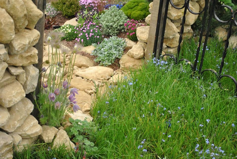 Сад из двух половинок «Любимая природа» от компании «D'Arcy & Everest». С одной стороны — искусственный альпийский сад, а с другой — растения альпийских лугов в естественной среде обитания. Фото: rhschelsea/facebook.com