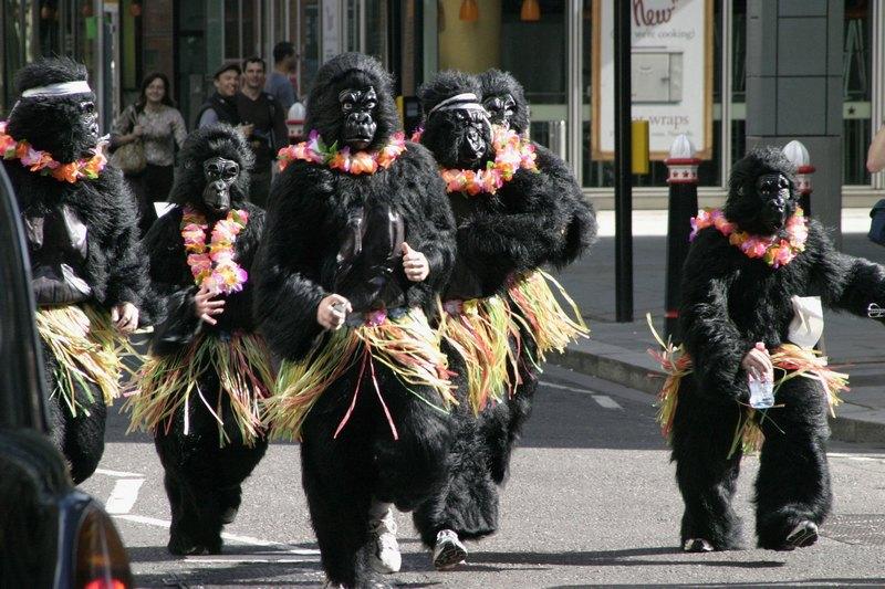 «Великий забіг горил» у Лондоні. Фото: Miles Willis/Getty Images