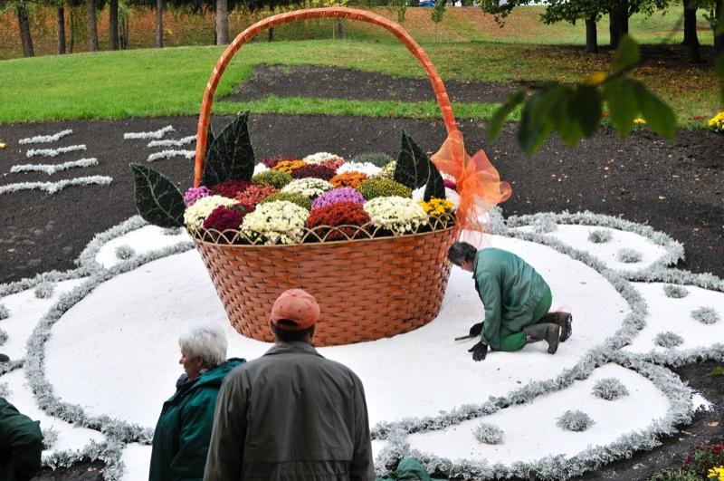 Выставка хризантем открылась в Киеве. Фото: Владимир Бородин/The Epoch Times Украина