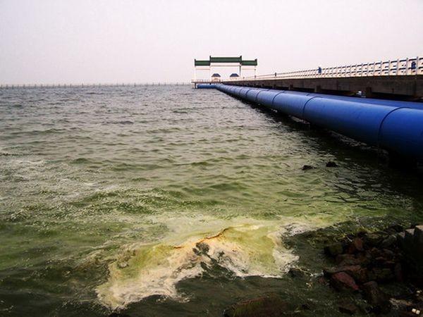 62% водоёмов в Китае из-за сильного загрязнения воды, не пригодны для жизни рыб. Фото с epochtimes.com