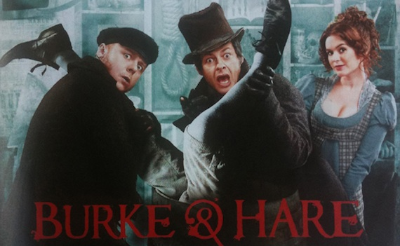 Постер фильма Берк и Хейр