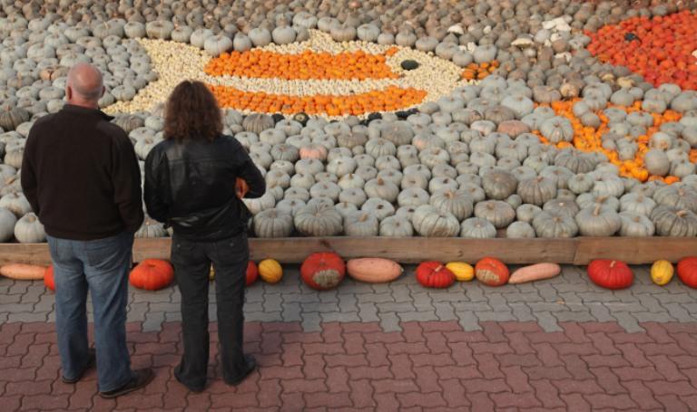 Выставка тыкв прошла в Германии. Фото: Sean Gallup / Getty Images