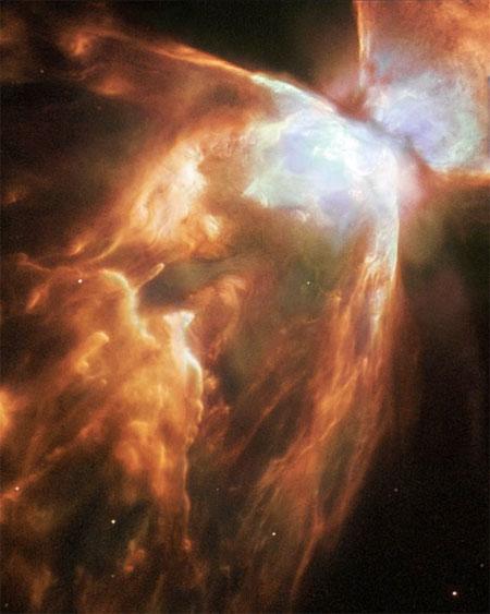 3 мая 2004 г. Телескоп «Хаббл» сделал боковой снимок туманности Жука, огромной стены из сжатого газа. В ее центре находится звезда, которая скоро должна погибнуть. Фото: NASA, ESA and A.Zijlstra (UMIST, Manchester, UK)