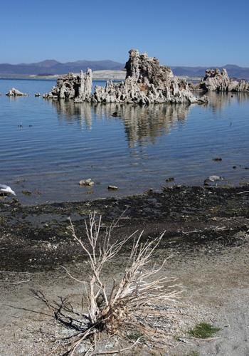 Со дна озера стали возникать диковинные природные образования серого цвета, напоминающие пористую пемзу, а вулканические процессы на дне озера все еще продолжались. Фото: GABRIEL BOUYS/AFP/Getty Images