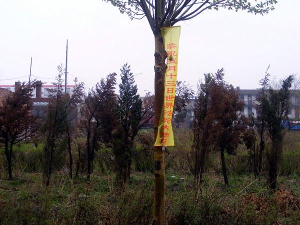 Плакати присвячені Всесвітньому Дню Фалунь Дафа (Фалуньгун) заборонені в Китайській Народній Республіці. Фото: minghui.org
