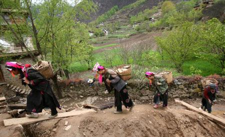 Женщины несут на спине камни для строительства дома. Фото: China photos/ Getty image
