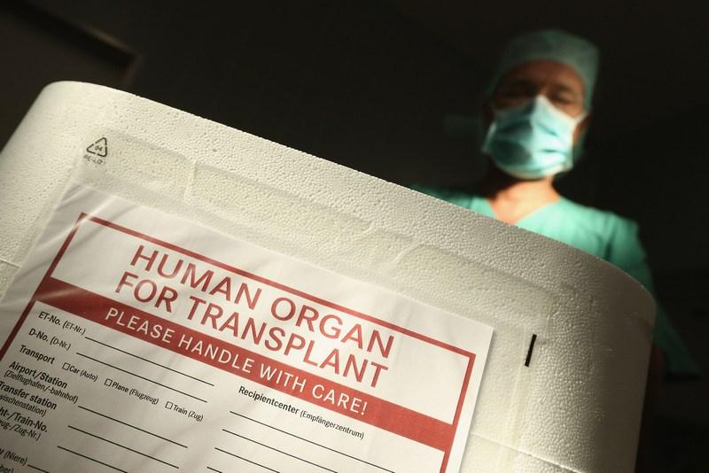 Берлін, Німеччина, 28 вересня. Німецькі політики і медики обговорюють проблеми пересадки органів у зв'язку з виявленими порушеннями в ряді клінік країни. Фото: Sean Gallup/Getty Images