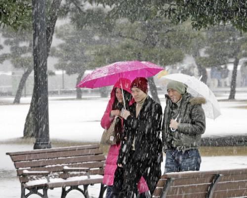 На редкость сильный снегопад выпал в столице Японии Токио. Фото: YOSHIKAZU TSUNO/AFP/Getty Images