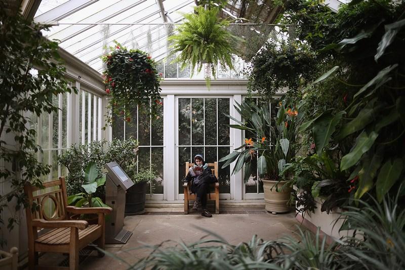 Посетительница отдыхает в «Уединённом саду». Фото: Dan Kitwood/Getty Images