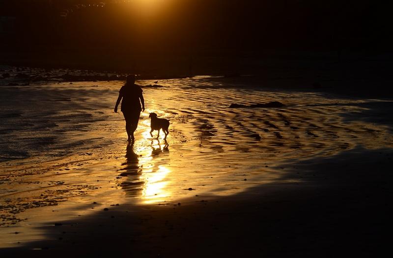 Малибу, пляж Лео Каррильо, США, 3 марта. На юге Калифорнии наступила почти летняя жара. Фото: JOE KLAMAR/AFP/Getty Images