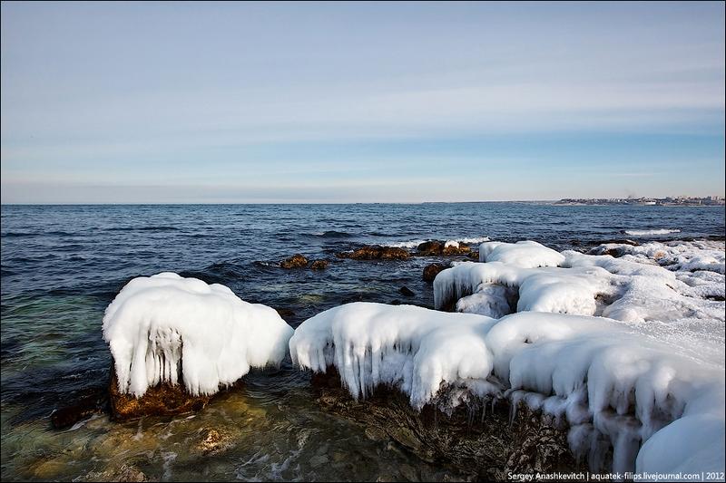 Ледяная глазурь. Фото: aquatek-filips.livejournal.com