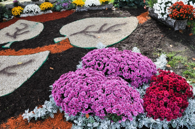 Элемент цветочной экспозиции на выставке хризантем в Киеве. Фото: Владимир Бородин/The Epoch Times Украина
