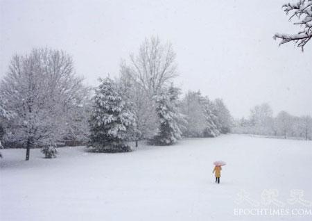 Прогулянка у снігопад. Фото: Чан Лей/Велика Епоха