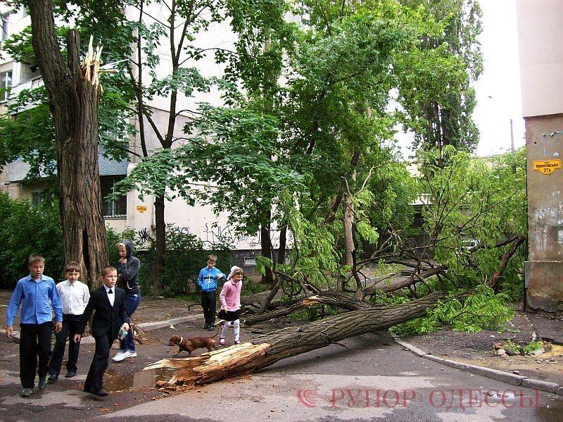 Одесские улицы после потопа. Фото: Рупор Одессы