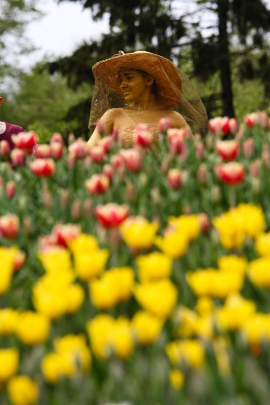 Выставка тюльпанов открылась в Киеве на певческом поле. Фото: Великая Эпоха