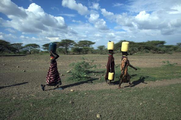 Женщины из отдаленного племени Теркана в северной части Кении несут воду, добытую из колодца. Некоторые поселенцы проходят около 10 миль (16 км), чтобы добыть свежей воды для их семей. Фото: Christopher Furlong/Getty Images