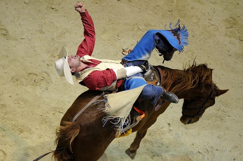 Голд-Кост, Австралия, 15 июня. Деон Лейн пытается удержаться на лошади в финале национальных родео-состязаний. Фото: Matt Roberts/Getty Images