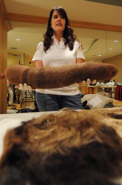 Утечка нефти в Мексиканском заливе не прекращена. Сотрудница из одной гостиницы Нового Орлеана штата Луизиана Дэйсай Судерэн собирает в парикмахерской остриженные человеческие волосы, шубы, меха и укладывает их в нейлоновые чулки, которые помещают на пове