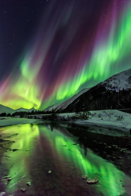 Відображення північного сяйва в невеликому струмку, що протікає вздовж шосе в долині Портідж, штат Аляска. Фото: Nick Selway/outdoorphotographer.com