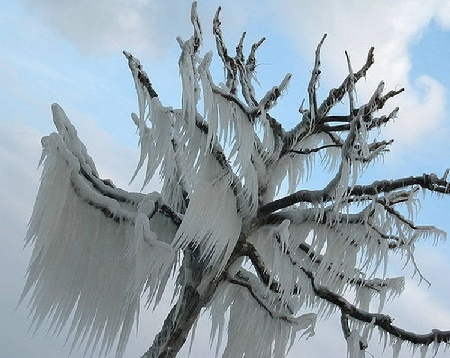 Китай: Улицы после снегопада. Фото с сайта epochtimes.com