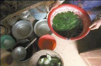 Из-за недостатка продовольствия, многие жители деревни Сяованшань провинции Юньнань уже перешли на подножный корм, питаясь травами и листьями. Фото с epochtimes.com