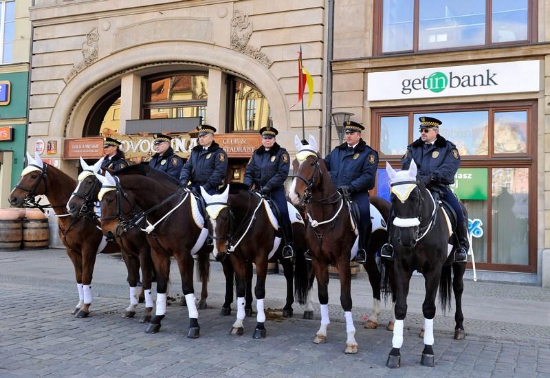 Кінна поліція Вроцлава. Фото: Claudio Villa/Getty Images