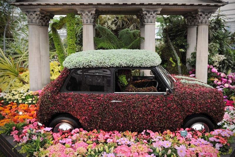 Лондон, Англия, 21мая. Самая престижная выставка цветов открылась в Челси. Фото: CARL COURT/AFP/GettyImages