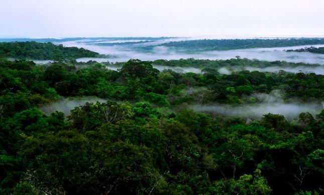 Амазонка — це найдовша річка у світі. Фото: Eduardo Rizzo/The Epoch Times En Espanol