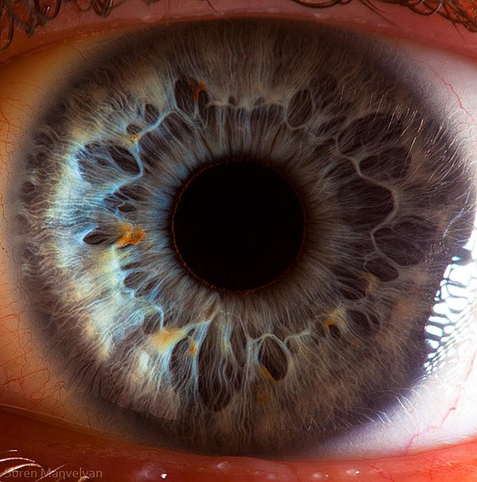 Твої прекрасні очі. Фото: Сурен Манвелян/surenmanvelyan.com