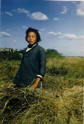 Китайские крестьяне. Фото с kanzhongguo.com