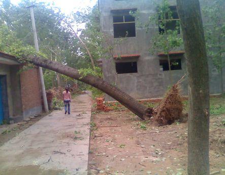 В результате непогоды в центрально-восточном Китае пострадали более 3 млн человек. Провинция Хэнань. 3 июня 2009 г. Фото с epochtimes.com