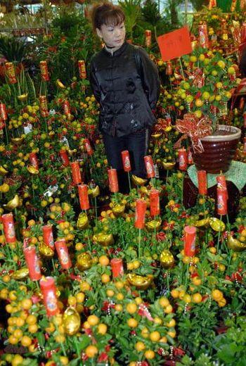Тайбэй. В цветочном магазине подают праздничные цветы. Фото: SAM YEH/AFP/Getty Images