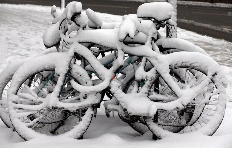 Бат, Англія, 18січня. Товстий шар снігу лежить на велосипедах. Сильні снігопади пройшли майже на всій території країни. Фото: Matt Cardy/Getty Images