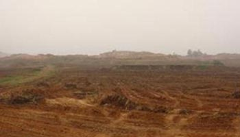 В конце расправы над крестьянами власти бульдозерами и экскаваторами расчистили землю, уничтожив на ней все посевы и постройки. Фото: boxun.com